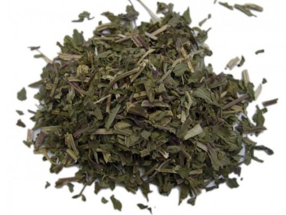 Menta (Mentha piperita)