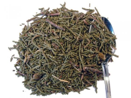 Black Juniper (Juniperus indica)