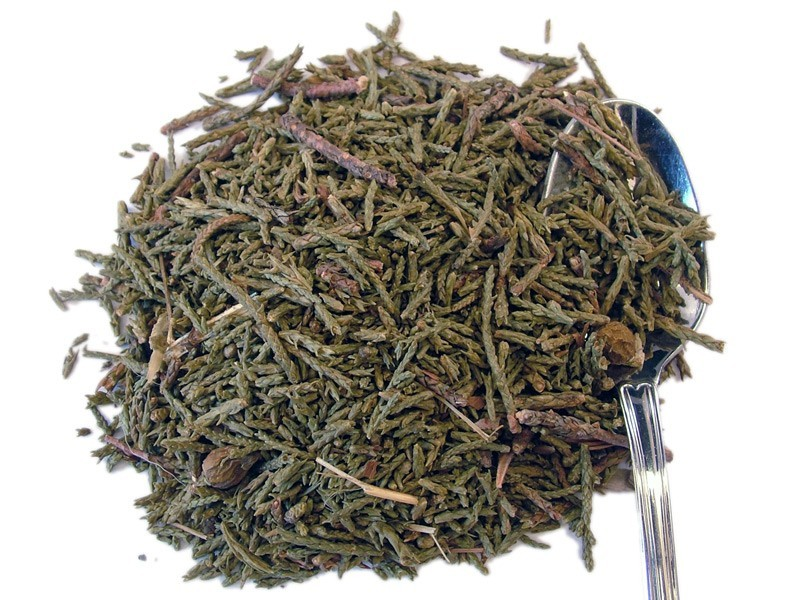 Ginepro nero (Juniperus Indica)