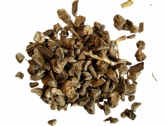 Enula Radice (Inula helenium)