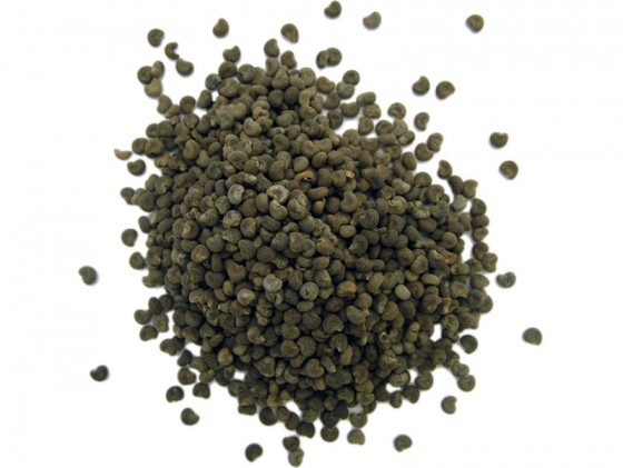 Musk Seeds (Abelmoschus moschatus)