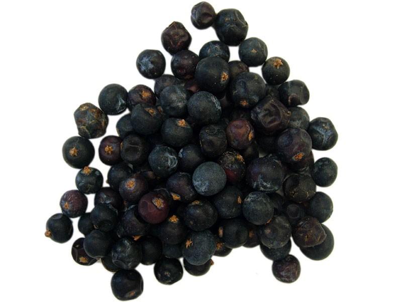 Ginepro Bacche (Juniperus communis)