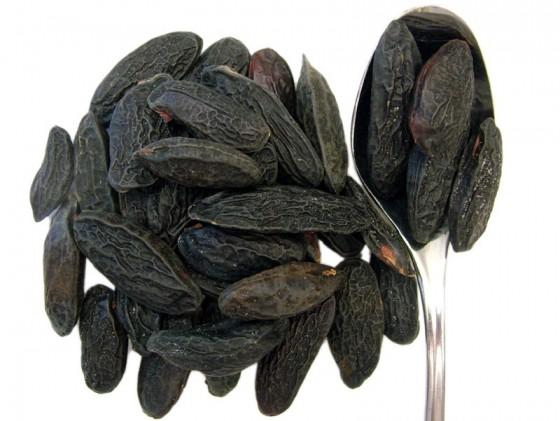 Tonka Beans (Dipteryx odorata)