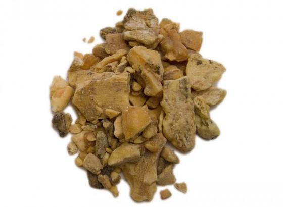 Benzoino del Siam (Styrax...