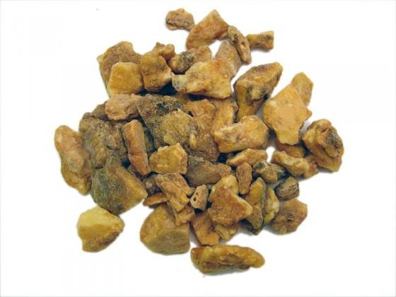 Benzoin (Styrax benzoides)