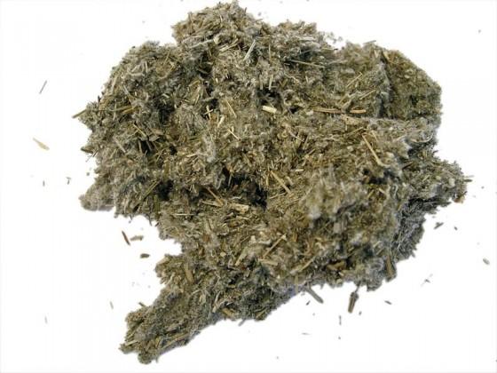 Desert Sage (Artemisia...