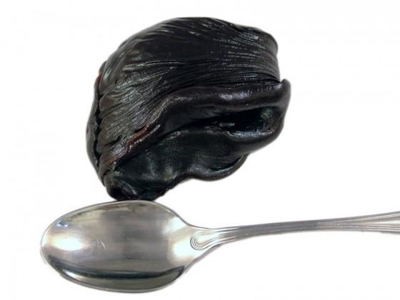 Balsamo del Tolu (Myroxylon Balsamum)
