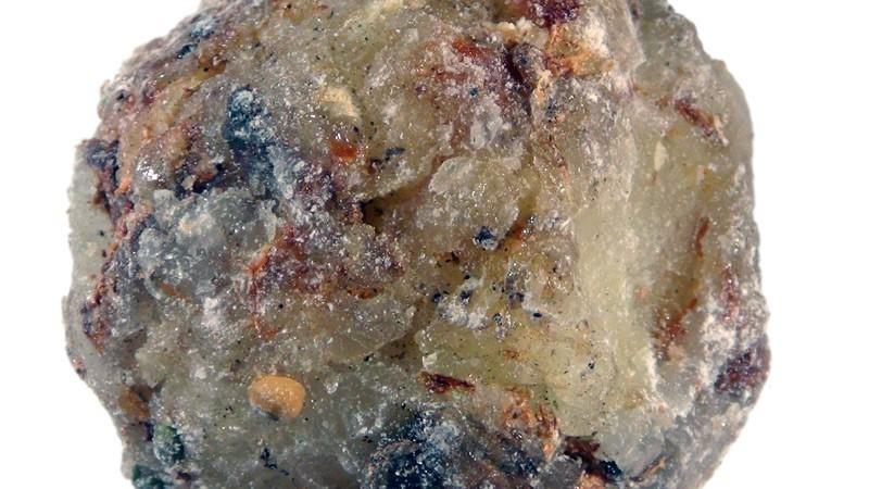 Haramy (Canarium Madagascariensis)