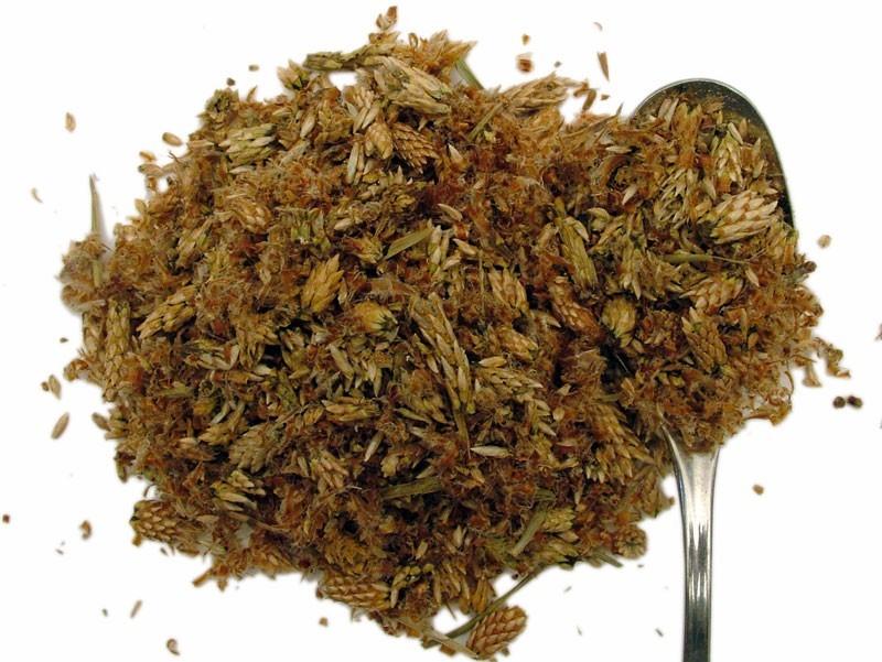Pino Gemme (Pinus Sylvestris)